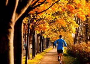 nice-run-scenery